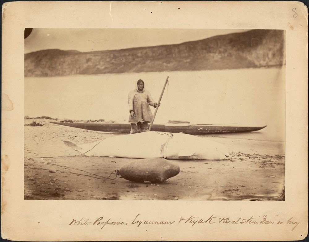 """Portrait of a hunter, a beluga, a seal skin """"daw"""" (a buoy), and a kayak along the edge of the Little Whale River, Quebec. Photographer: George Simpson McTavish (MIKAN 3264747)"""