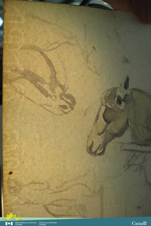 "Colour photograph showing a watercolour sketch of a horse. Along the bottom edge is the faint imprint of a watermark reading ""1915 England"""