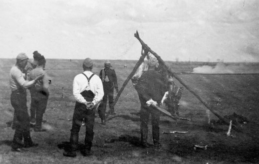 A black-and-white photograph of six men standing around an animal carcass hanging from a tripod built from branches.