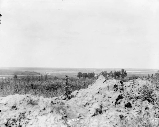 A black-and-white photograph of a pastoral landscape.