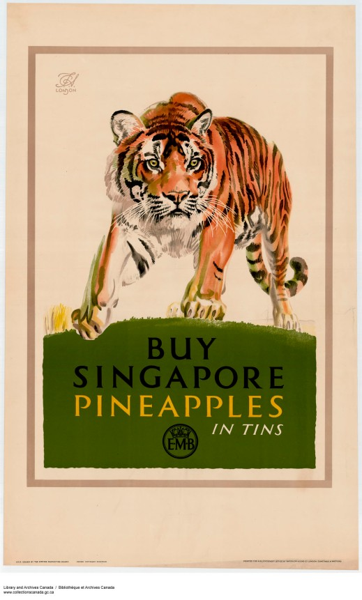 "A colour print of a tiger and underneath is the caption, ""Buy Singapore Pineapples in Tins."""