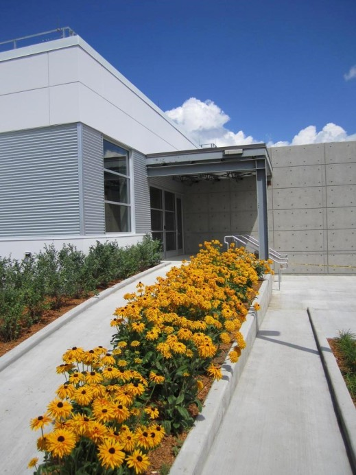 A colour photograph of the entrance of a grey building with a row of yellow flowers in front.