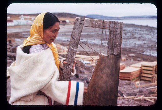 Color photograph of an Inuit woman wearing a white wool parka and a yellow headscarf, stretching sealskin on a wooden frame near a shoreline.