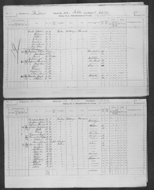 "Census chart titled ""Tableau No. 1—Dénombrement des Vivants (Schedule No. 1—Nominal Return of the Living)"" with handwritten entries for each of the columns. Columns include name, age, gender, birthplace, origins, religion, profession, education, marital status and disabilities. Each row is a separate household."