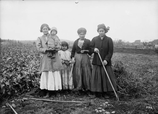 A black-and-white photograph of three women ad two children standing in a potato field.