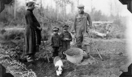 A black-and-white photo of a pregnant woman, two children and a man harvesting potatoes.