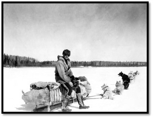 A black-and-white photograph of a man dressed in winter clothing sitting on a sled with six sled dogs on leads.
