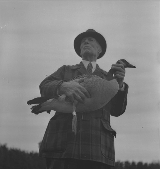 A black-and-white photograph of a man supporting a Canada Goose under his right arm and holding its neck with his left hand. The goose's right leg has an identification band around it