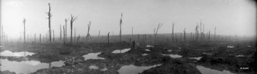 A black-and-white photograph of a bombed landscape. The ground is muddy with water-filled craters and a burned out forest.