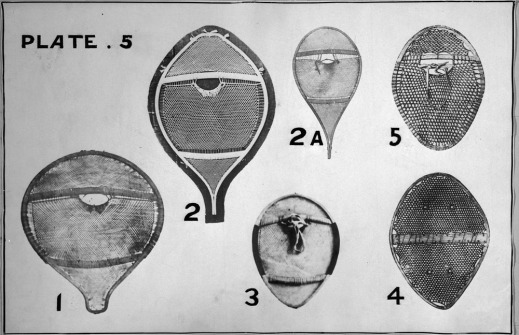 A black-and-white photograph showing six kinds of round or oval-shaped snowshoes made with various materials and styles of webbing.