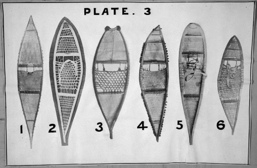 A black-and-white photograph showing six kinds of long snowshoes made with various materials and styles of webbing.