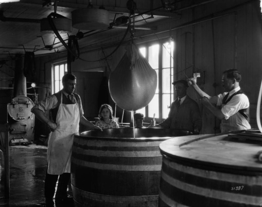 A black-and-white photograph of a man using a hoist to lift cheese from a vat. Two other men, a girl and a boy watch from behind the vat.