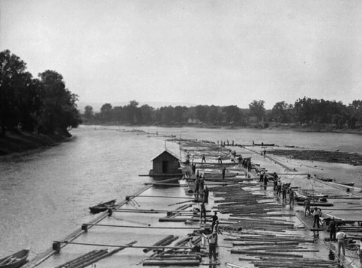 A black-and-white photograph of a log drive going down a river.