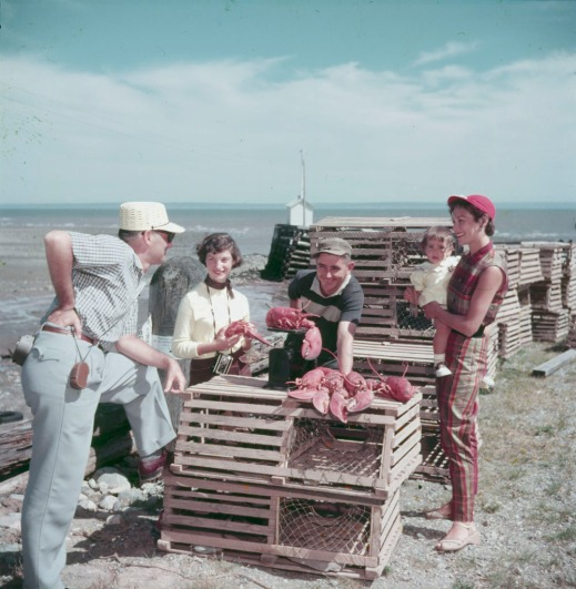 A colour photograph of two men, two women and a child around lobster traps as they look at some lobsters.