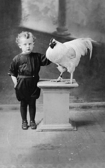 A black-and-white photograph of a small boy. To the boy's left is a white rooster on top of a pedestal.