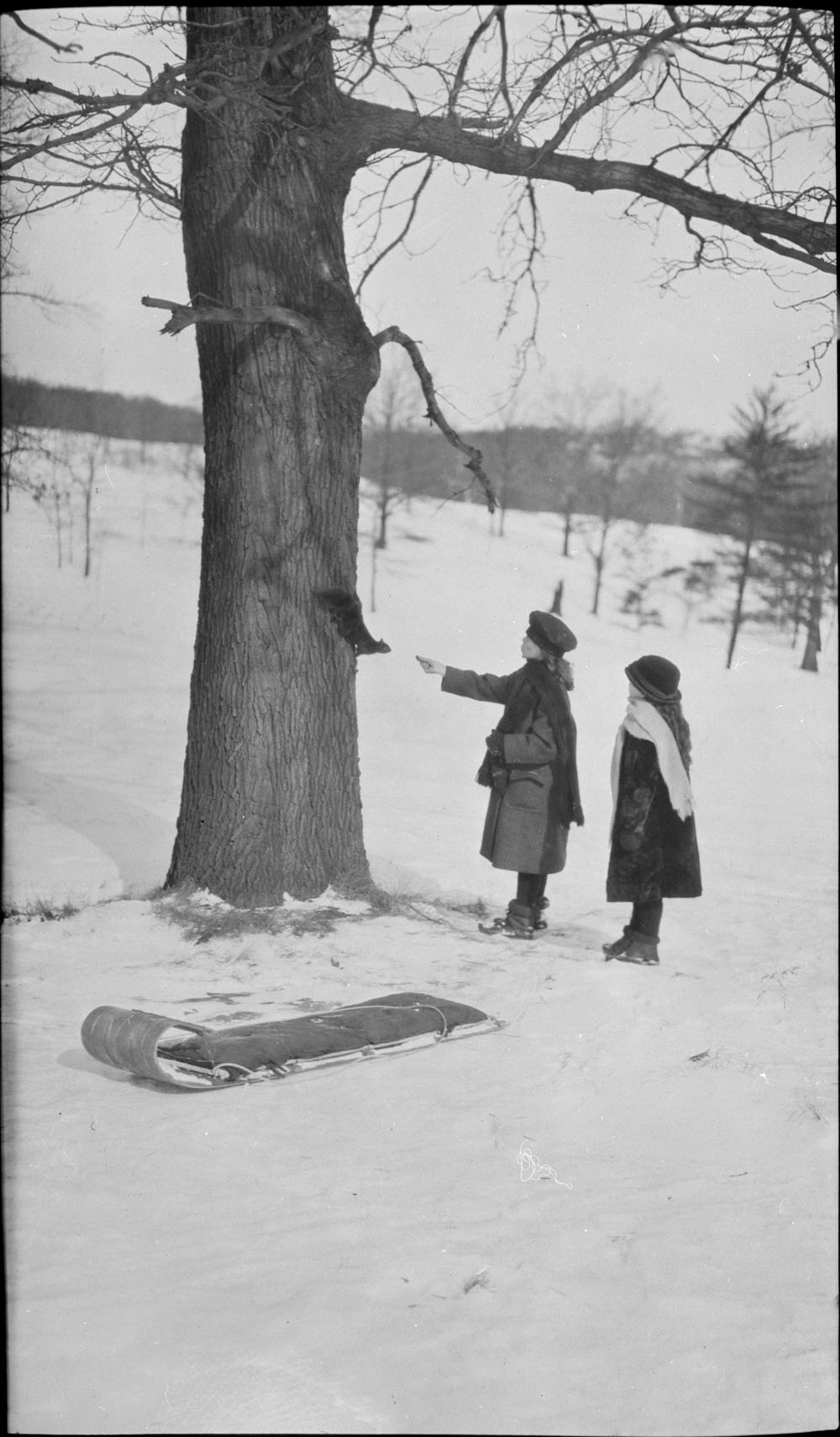 A black-and-white photograph of two girls standing next to a tree in winter. One of the girls feeds a squirrel clinging to the trunk.