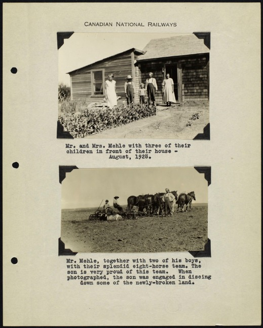 Page from an album with two black and white photographs; one showing a family standing in front of a house and the other showing a team of horses pulling a plough. Photos are captioned with typed text.