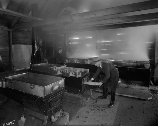 A black-and-white photograph of two men inside a log building boiling down maple sap in trough-like metal containers.