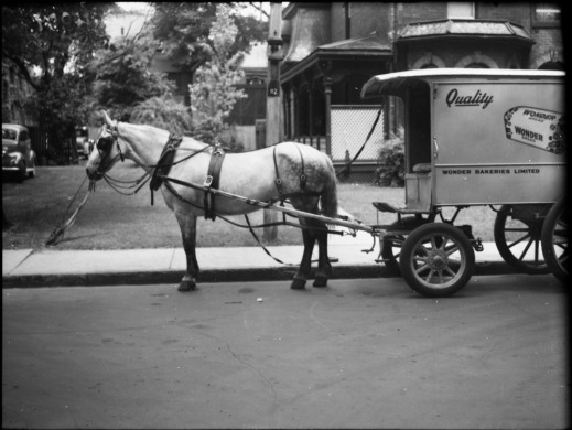 "On a residential street, a horse is pulling a wagon labeled with ""Quality,"" ""Wonder Bakeries Limited,"" and a picture of a Wonder Bread loaf."