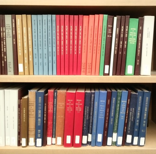 A colour photograph of two shelves of multi-coloured hardcover books.