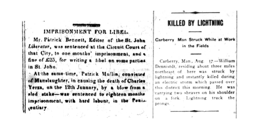 "Alt text: Two columns of text from newspapers, with the headings ""Imprisonment for Libel"" and ""Killed by Lightning."""
