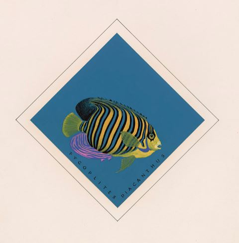 A colour design showing a brightly coloured fish with yellow, blue and black stripes on a blue background.