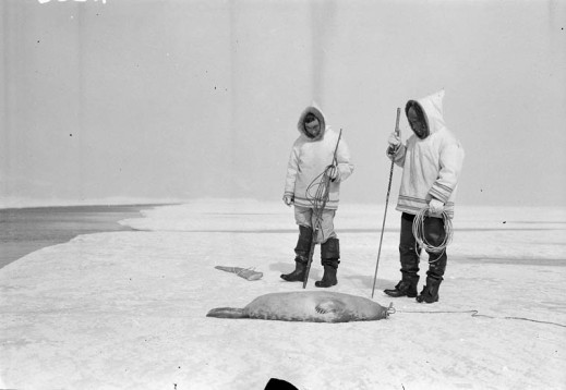 A black-and-white photo of Inuuk standing next to a seal on the ice.