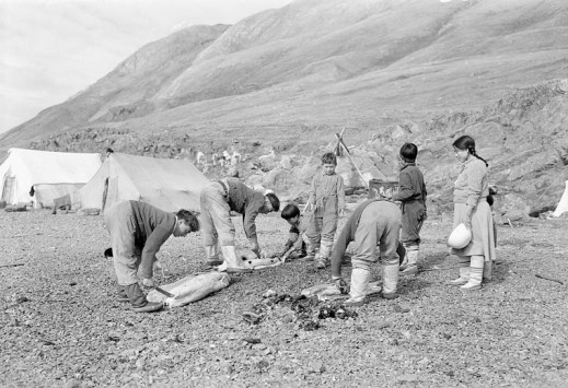 Black-and-white photo showing four adults and three children cutting up seals. They are on a rocky beach. Canvas tents are in the background.