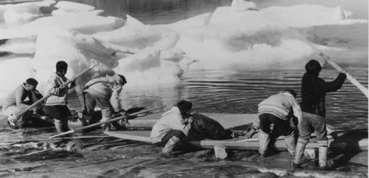 A black-and-white photo of six Inuit hunters loading their qajaqs with supplies for the hunt.